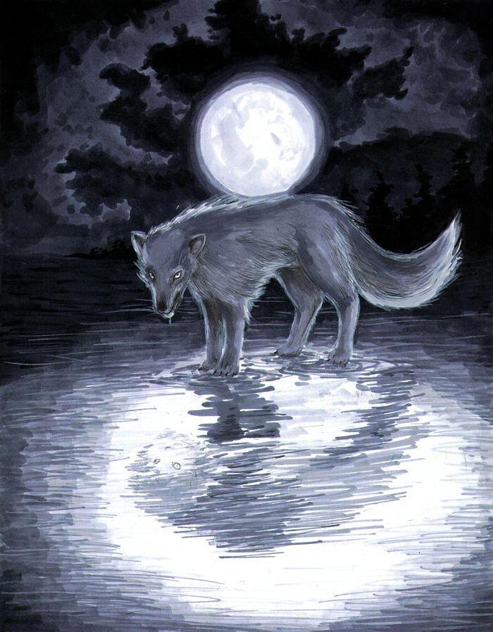 herois vilões e lendas Wolf