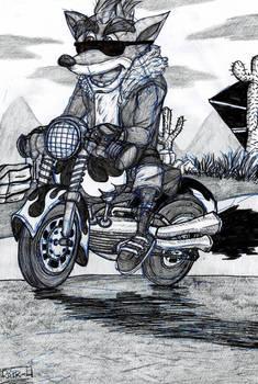 Hog ride