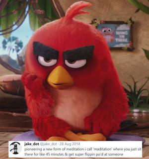 Tweet Memes