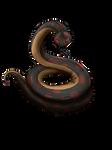 Freydis the Yuan-Ti Snake