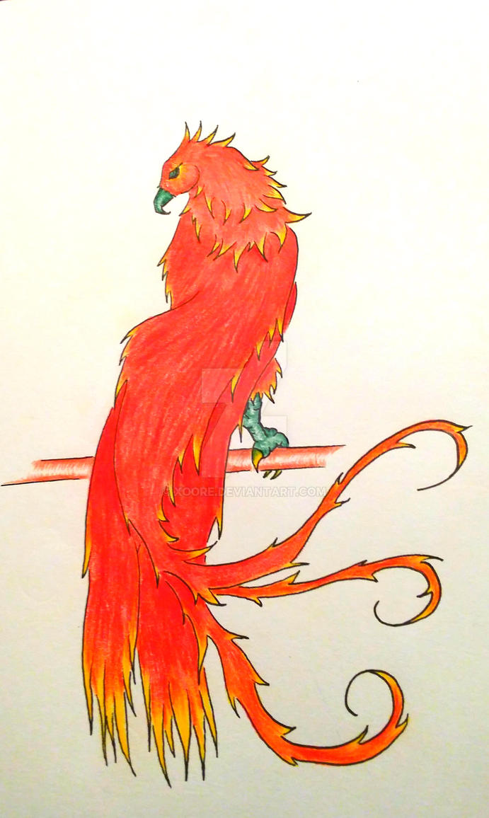 Phoenix by Xoore
