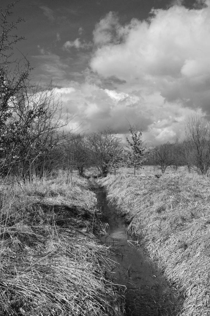 Polish spring by WiorkaEG