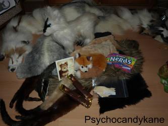 Taxidermy secret santa from PsychoCandyKane by Braveheart-Taxidermy