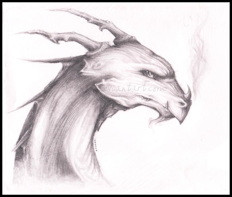 Pencil Dragon Head by Ardnak on deviantART