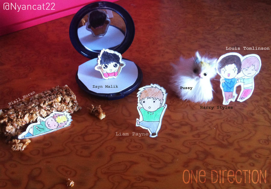 Mini One Direction by laura22elle