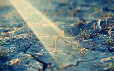 Spotlight ... by zumzzet