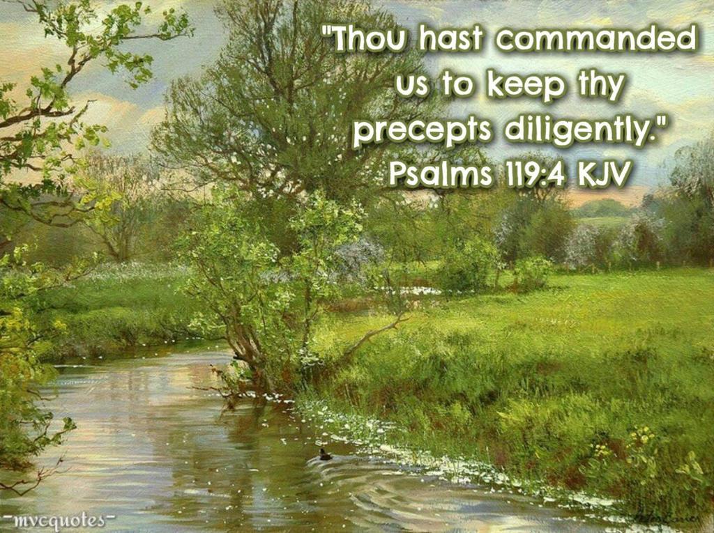 Image result for ps 119:4 kjv