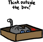 Cats love boxes