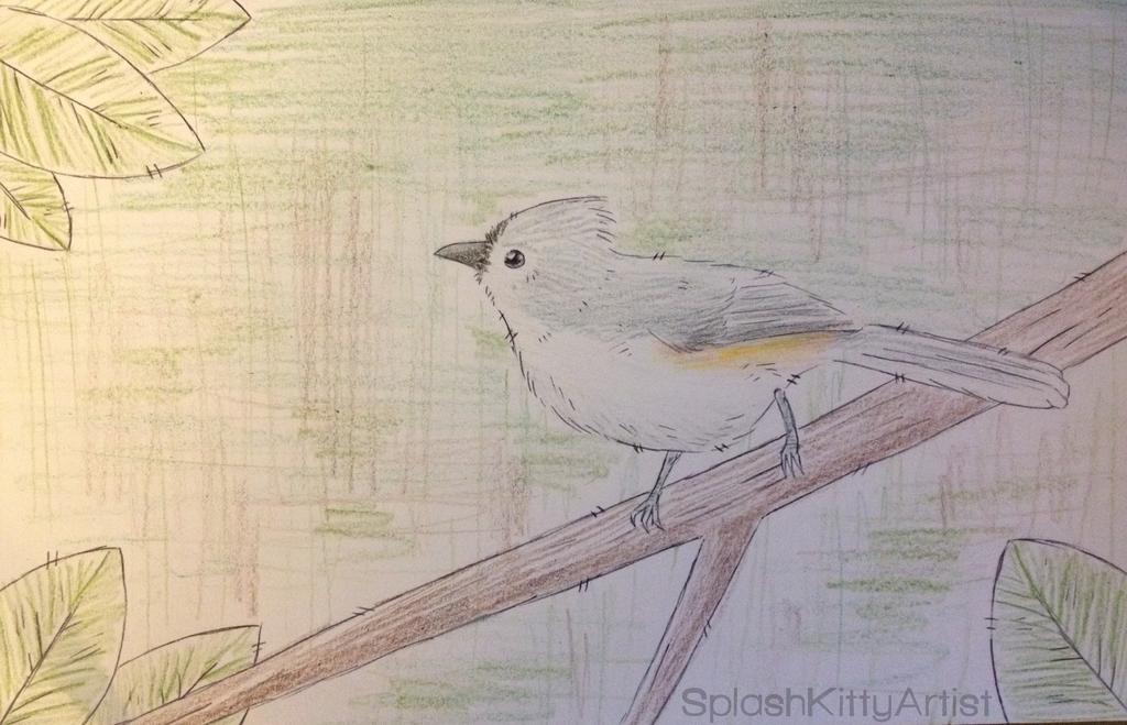 Bird by SplashKittyArtist