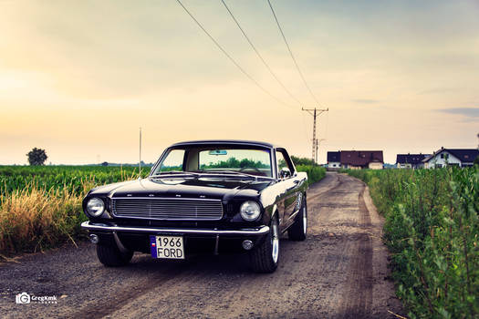 Mustang '66 Shot II