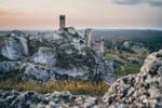 Ruins of Olszyn Castle