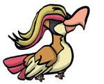 Pidgeot duck