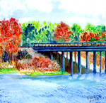 Chenier-lake-dam-road, Nov, West Monroe, La by rigmedic40