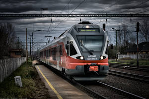 train by thePetya