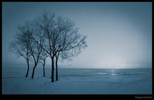 Winter by SergioPachini