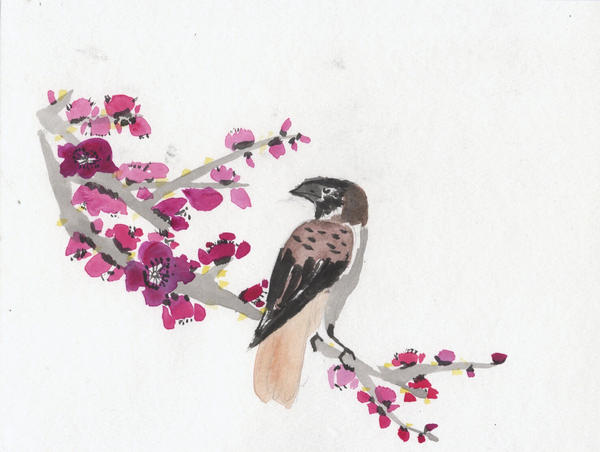 Plum Blossoms with Sparrow