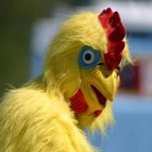 Chickenman-16's Profile Picture