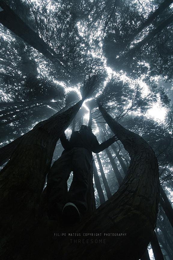 Threesome by PhilipMatthews
