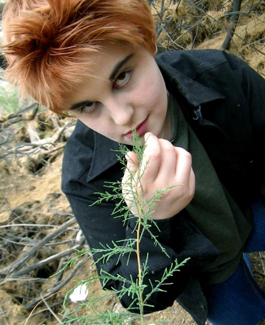 Edward Cullen: Lion's Den by kay-sama