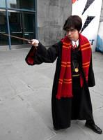 Harry Potter: Lively by kay-sama