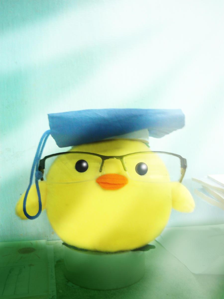Graduate little chicken by chillydragon