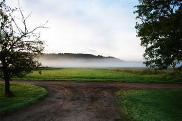 Morning fog by Roserud