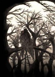 The eye of a dead forest. by NefarusYul