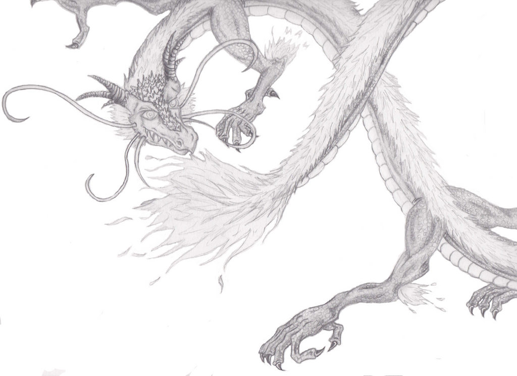 Chinese dragon pencil drawing by anyuiite