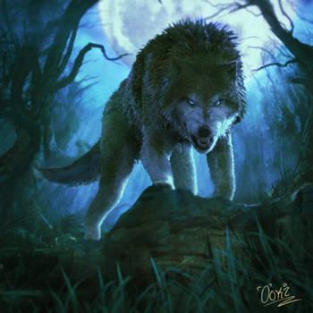 Wolf by 0oki