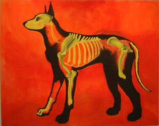 X-ray dog, Oil by rgyoung