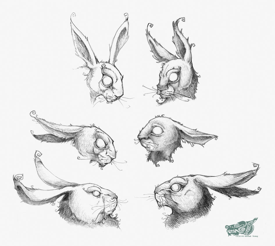 Line Drawing Rabbit : And rabbits by rgyoung on deviantart