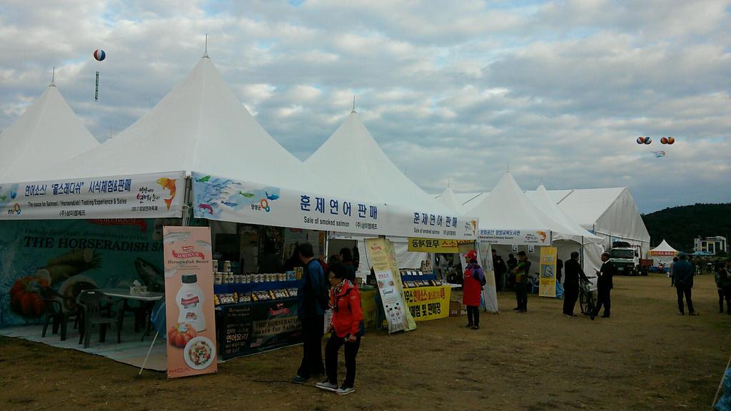 Salmon Festival in Yangyang,South Korea by komi114