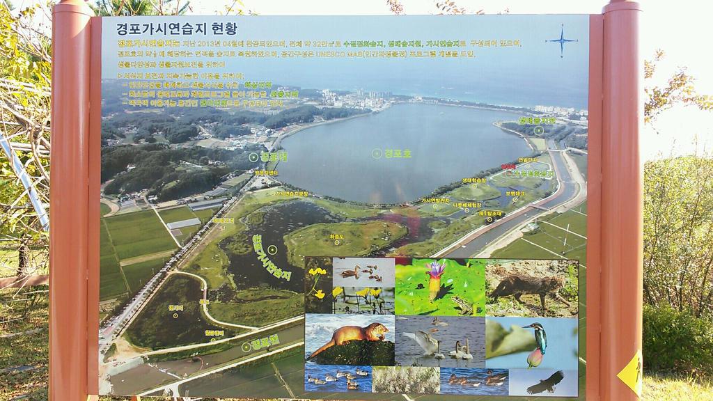 Gyeongpo Lake Where I'm Driving a Bike! by komi114