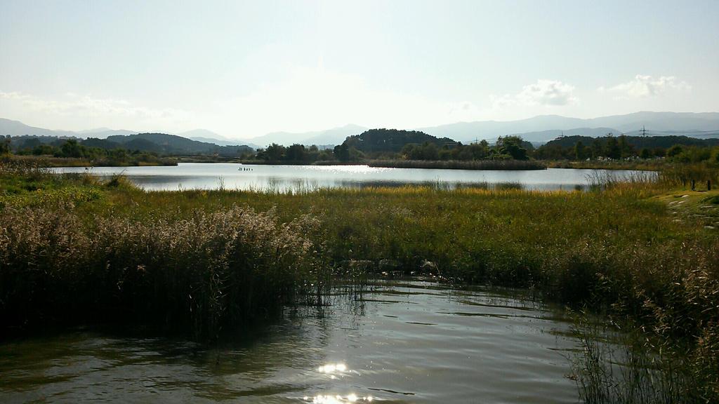 Gyeongpo Swamp Wetland by komi114