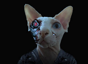 Sphynx-terminator