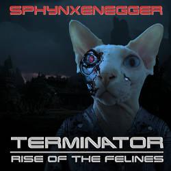 Terminator-sphynx by eric-omuro