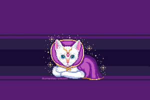 Royal White Kitten