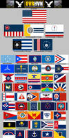 100 Stars: Flags of the Other Fifty US States