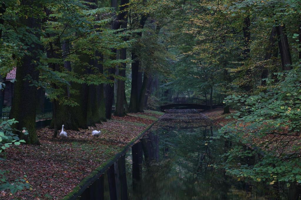 Herbst by Skanatiker