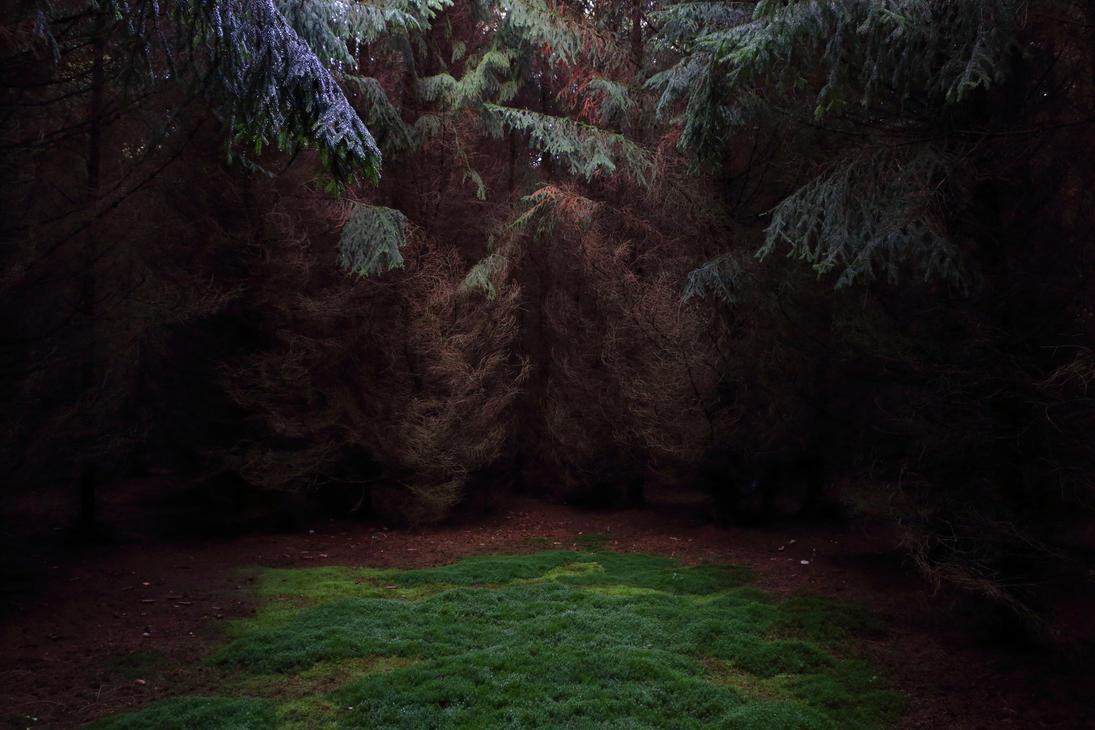 Fable Forest by Skanatiker