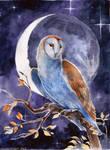 Owl's moon