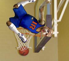 NBA Injury Morph Video Still by kazanjianm