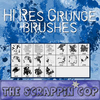Dynamic Grunge Brushes by debh945