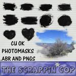 Photo mask brushes