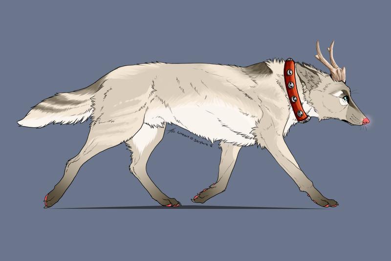 Rudolf Reference by Riokou