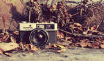Olympus Wasteland (Old Camera)