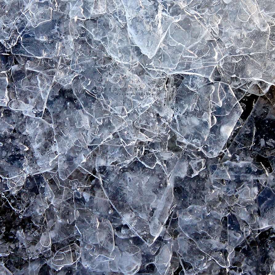 Ice forming glass by sed4tive