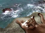 Cliffside Cougar by Sandusky78