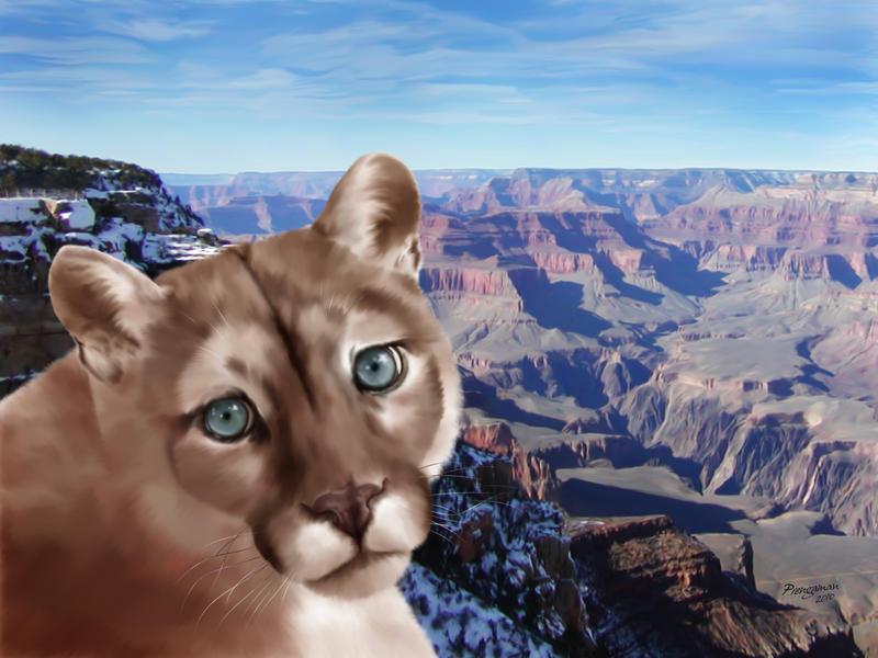 Grand Cougar by Sandusky78