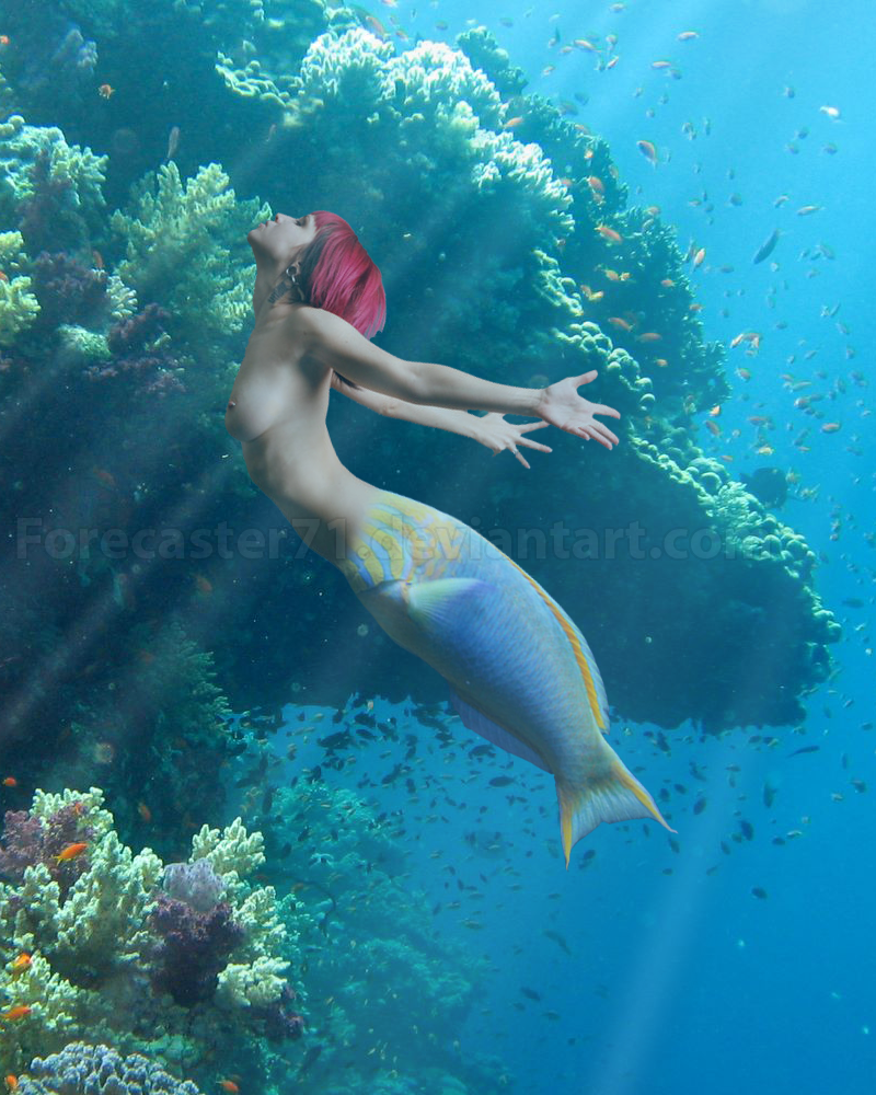 Mermaid Manipulation by Forecaster71